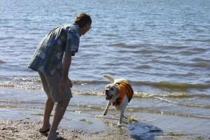 Playing fetch at Fiesta Island